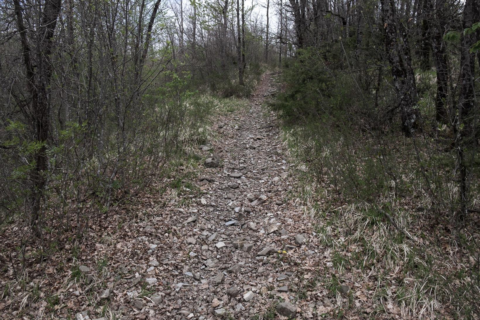 Monte-Belvedere-sentiero.