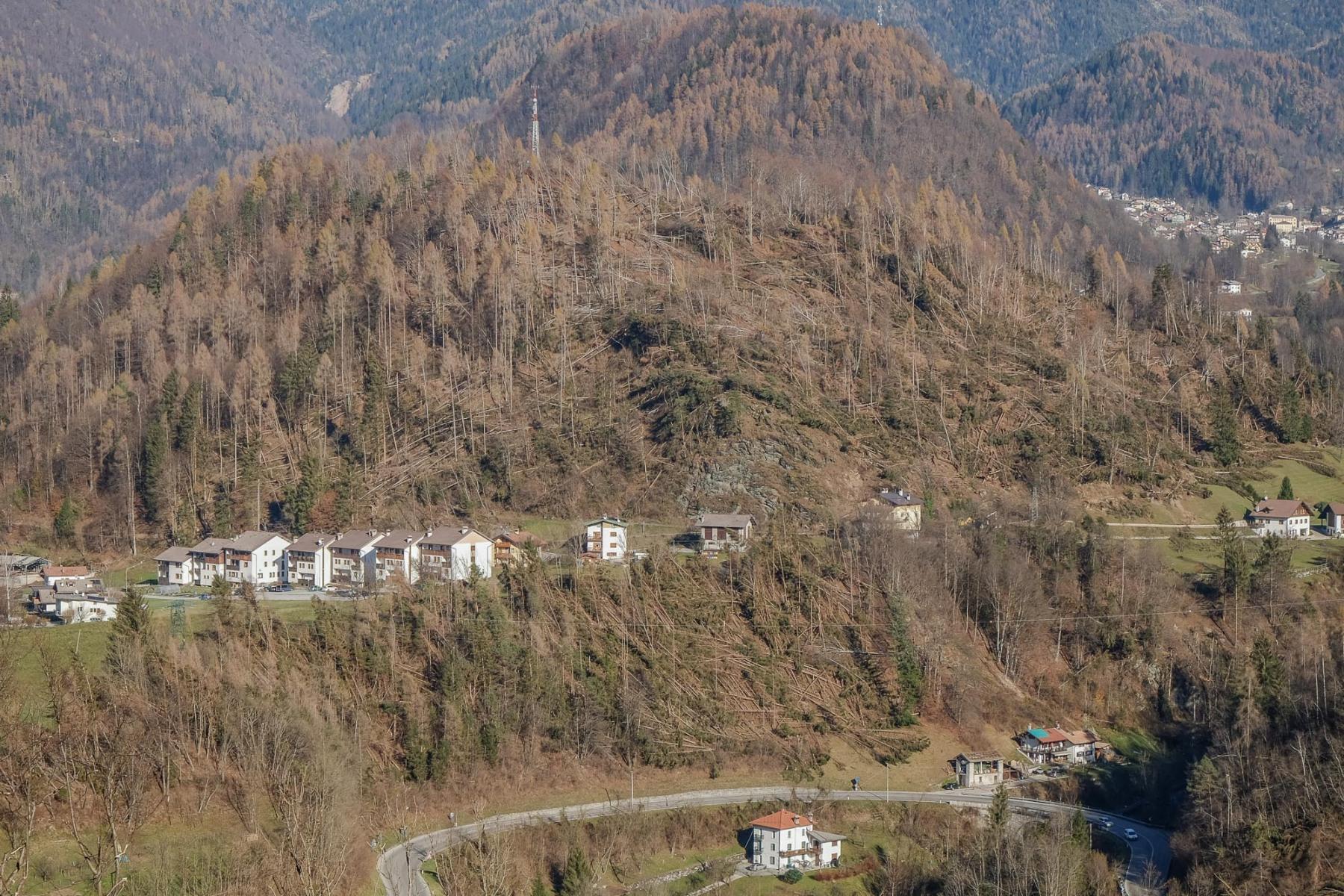 Provincia-Belluno-2018.-Tra-il-29-e-il-30-ottobre-2018-una-forte-ondata-eccezionale-di-maltempo-ha-sradicato-si-stima-14-milioni-di-alberi.