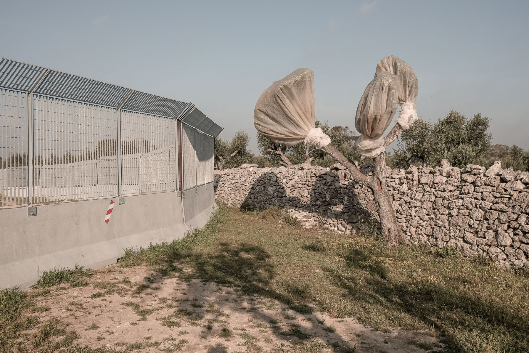 Puglia-San-Foca.-Cantiere-Tap